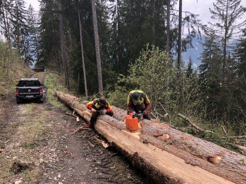 Holzverbau Sitenwald