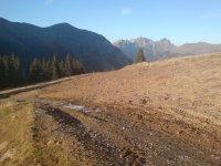 Pistenkorrektur Haslerberg für Lenk Bergbahnen