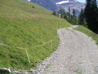 Ski- und Karrweg Bühlberg