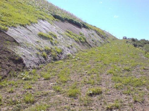 Hydrosaat auf 2000 m.ü.M kurz nach der Saat