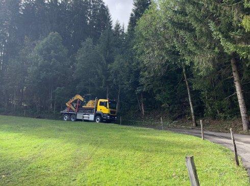 Holzlastwagen MAN